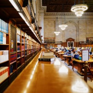 cursus rol en regierecht processtukken procesrecht webinar online e-learning steven venhuizen NOVA advocaat